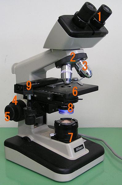 396px-Optical_<a href=/baike/xianweijing.html target=_blank>microscope</a>_nikon_alphaphot.jpg